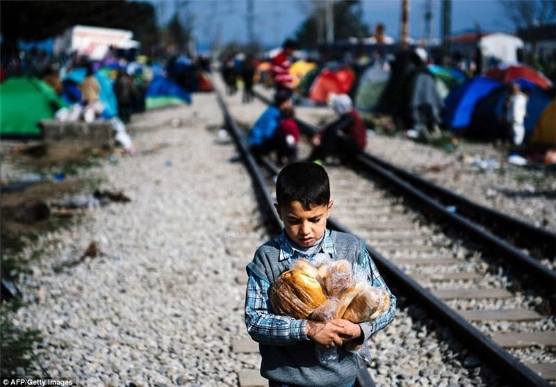 پناهجویان در تقلای نان و هیزم در اروپا