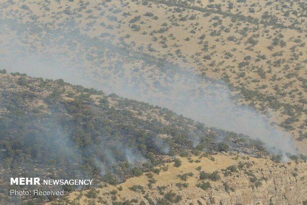 آتش سوزی 5 هکتار از مراتع طبیعی در ایلام