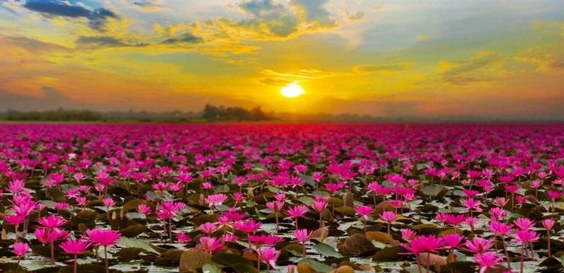 جاذبه های ناشناخته تایلند